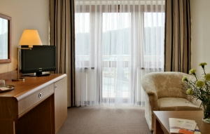 Apartament z balkonem - Hotel Activa***