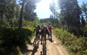 Zjazd rowerowy z Jaworzyny Krynickiej - Hotel Activa***